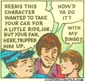 with my dingos
