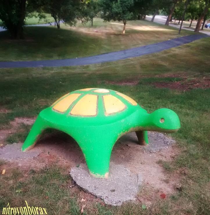 concrete turtle