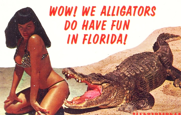 wow-we-alligators-do-have-fun-in-florida