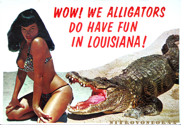 wow-we-alligators-do-have-fun-in-louisiana