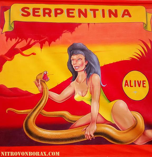 nvb serpentina